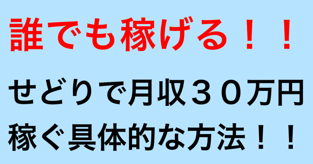 【初回限定価格❗️】せどりで月収30万円以上稼ぐ具体的な方法!!