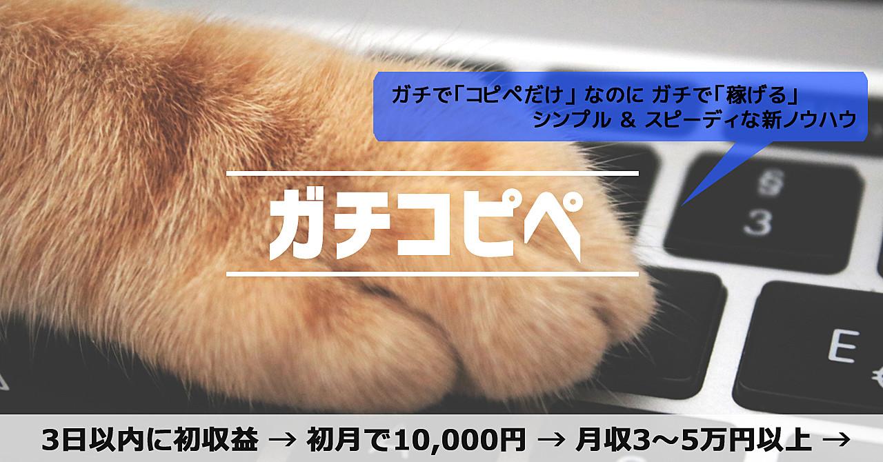【初月から10,000円以上】ビジネス経験0の超初心者でも100%稼げる『ガチコピペ』【3日以内に初収益】