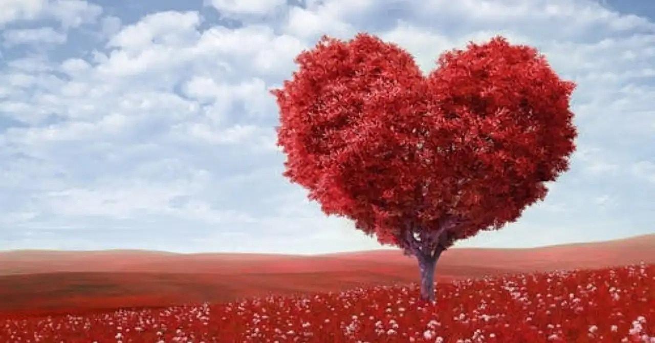 クロネコ屋の恋愛ブログ講座